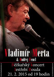 Vladimír Merta duo
